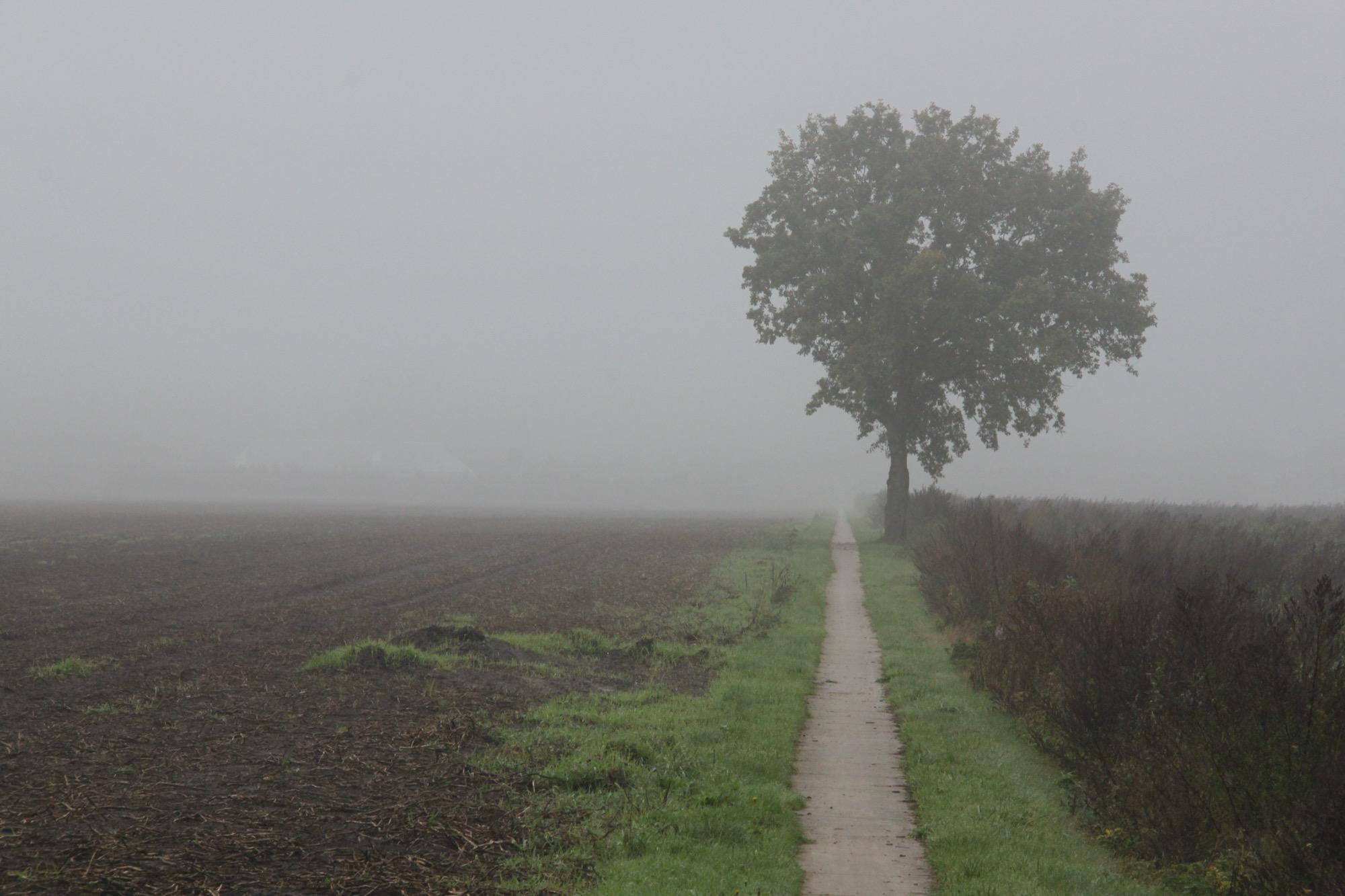 Rondje Drenthe Coevorden-Meppel melkpadtie